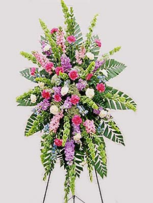 Denville Florist | Bright Spray
